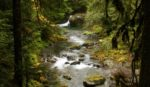 Support - creek credit Robert Graves - horz
