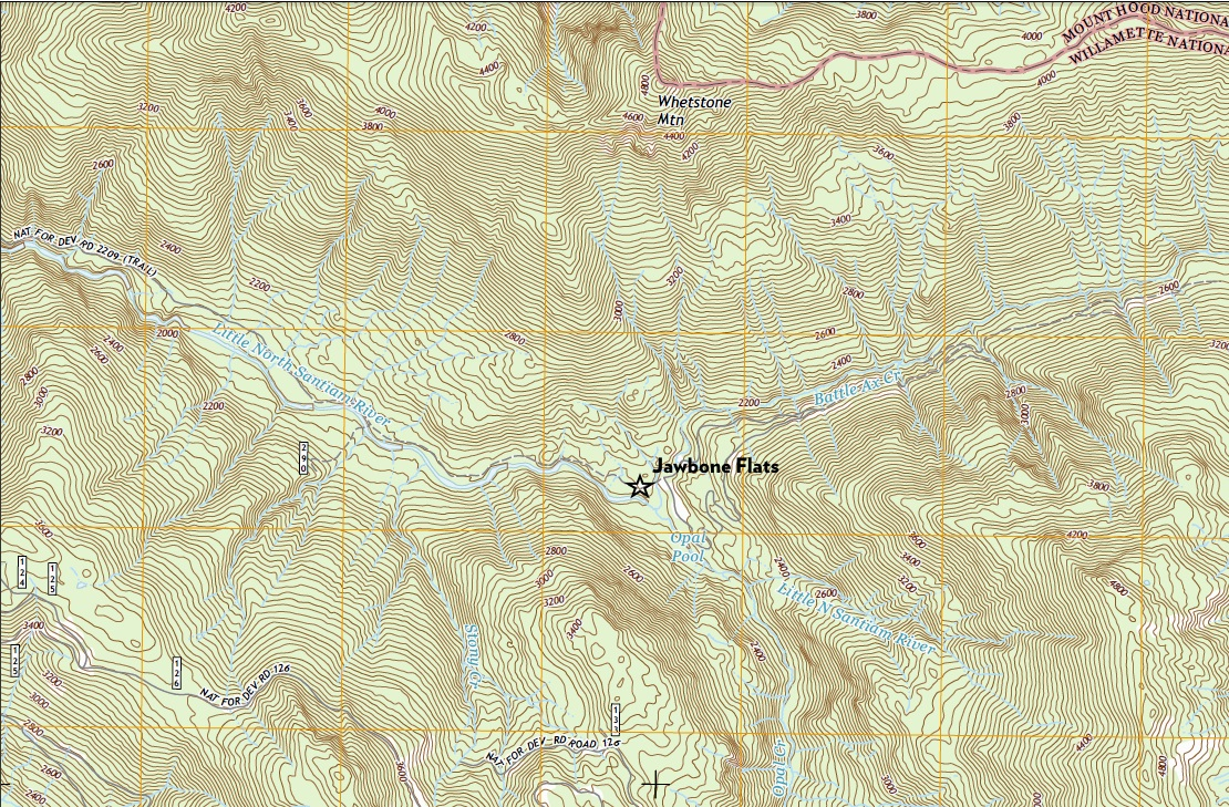 Trails | Opal Creek Ancient Forest Center